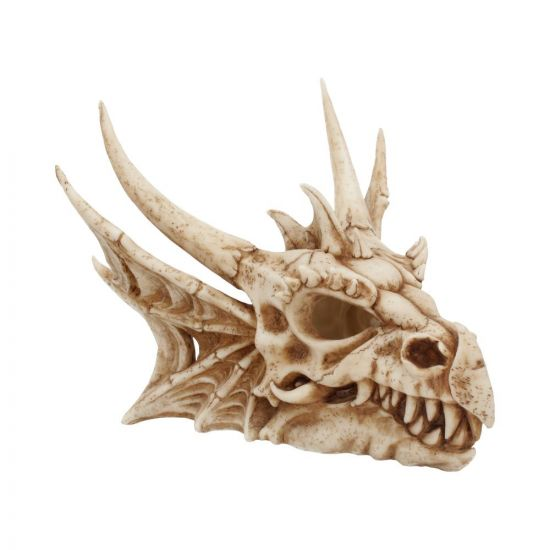 Dragon skull, by Nemesis now